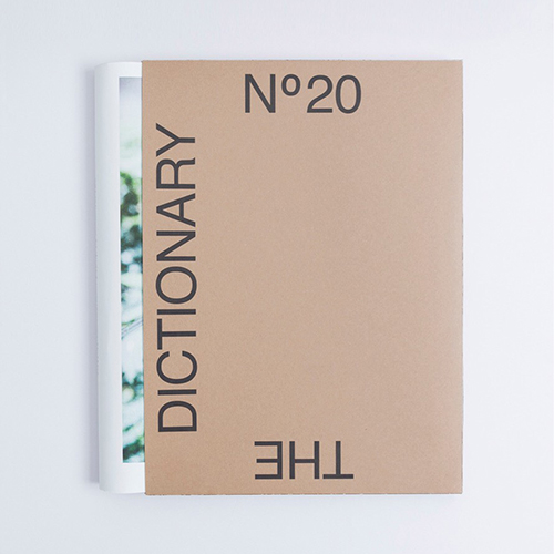 THE DICTIONARY No.20